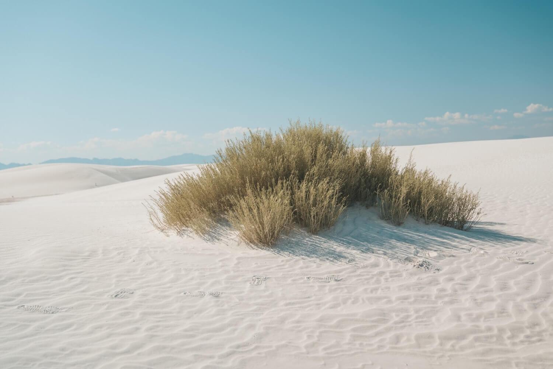 White Sands Nouveau Mexique